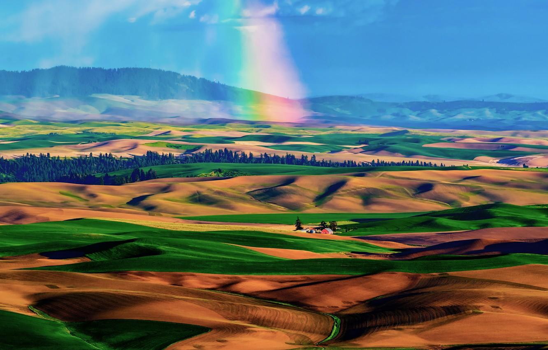 Фото обои небо, холмы, поля, радуга, долина, домик, ковры