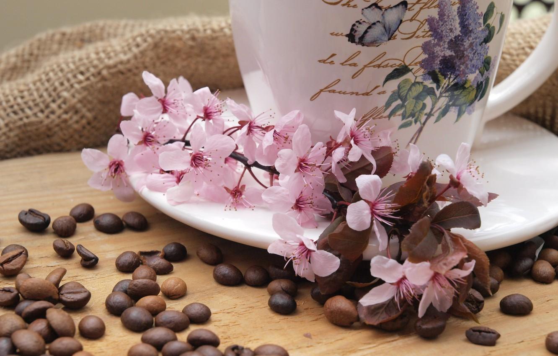 Фото обои цветы, кофе, ветка, чашка, ткань, мешковина, блюдце, зёрна