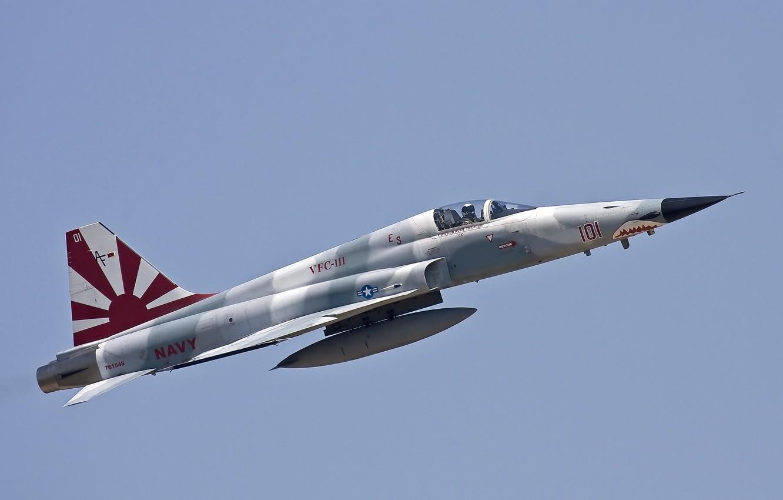Обои истребители, «тайгер» ii, многоцелевые, F-5e, tiger ii. Авиация foto 9