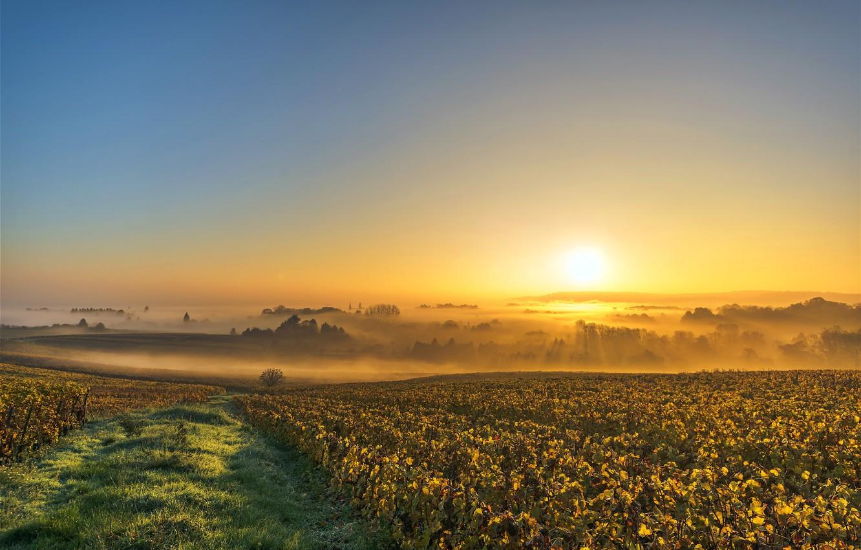 может только фотографии утреннего поля курганской области идет