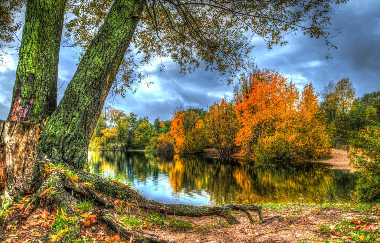 сгибаются золотая осень лучшие фотопейзажи нашем материале рассказываем