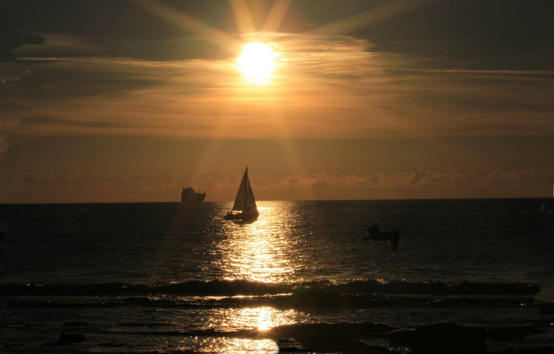 Фото обои море, волны, небо, солнце, облака, закат, корабль, парусник, чайка, яхта, sky, sea, bird, sunset, water, …