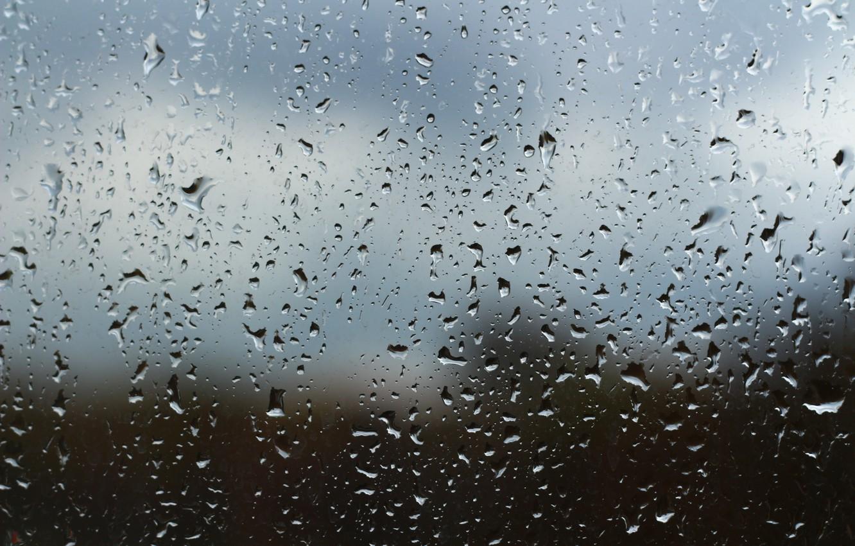 Обои капли, дождь, стекло. Разное foto 13