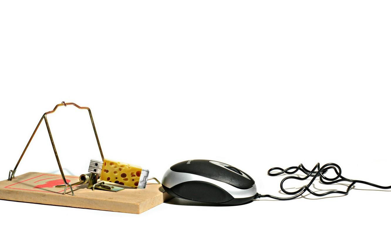 Фото обои сыр, мышеловка, мыш