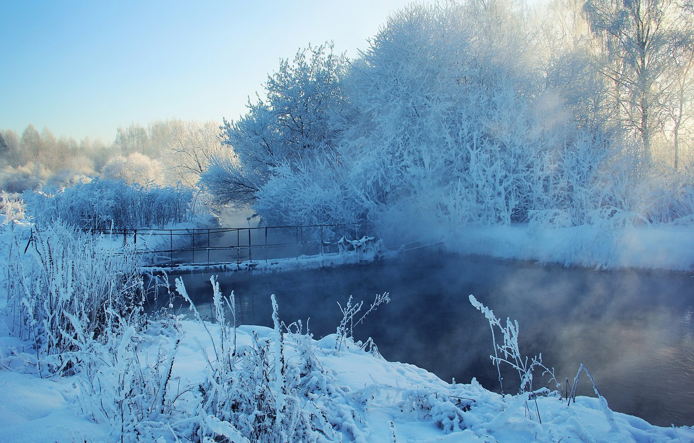 Фото обои зима, снег, деревья, мост, река