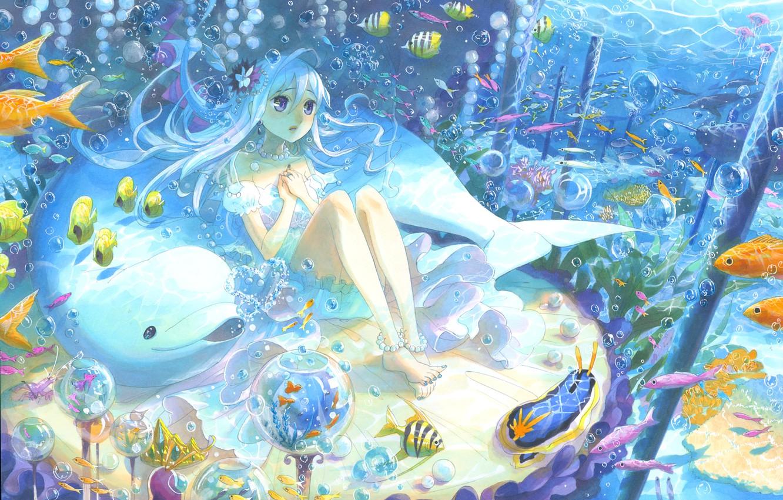 Фото обои рыбы, дельфин, пузырьки, арт, девочка, под водой, kyouya kakehi