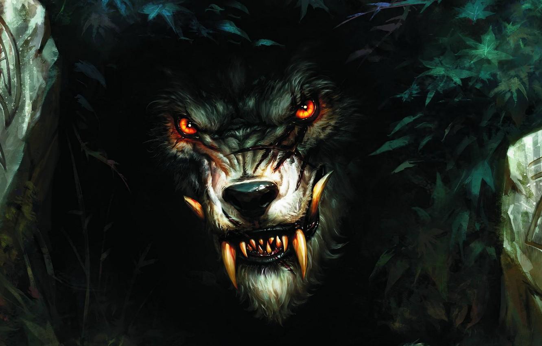 Обои рычит, Оборотень, werewolf, wolf. Разное foto 13