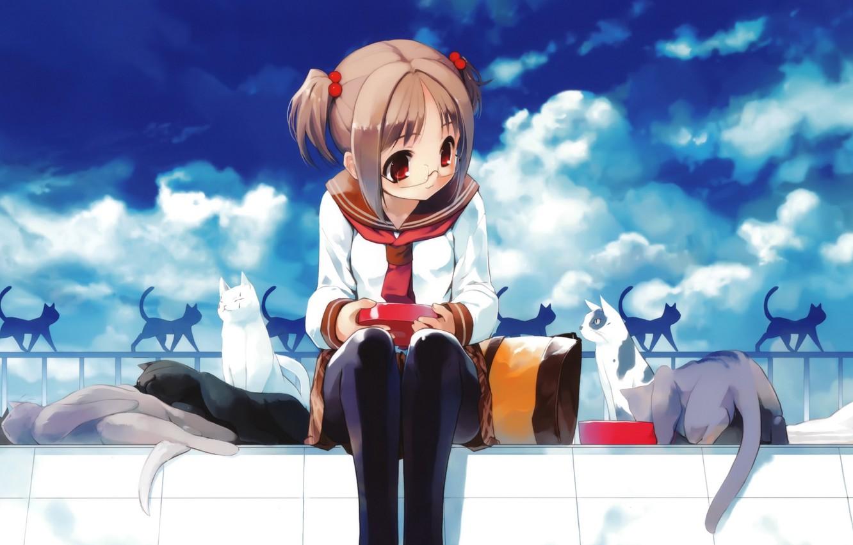 Фото обои небо, облака, кошки, аниме, очки, девочка, униформа