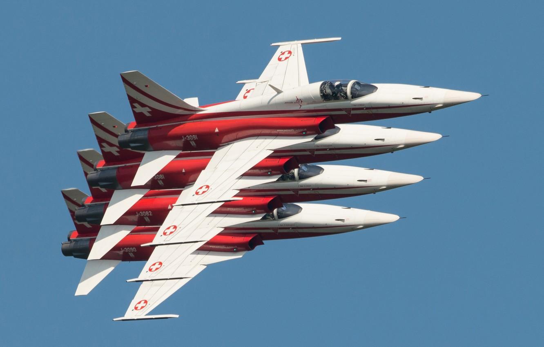 Обои истребители, «тайгер» ii, многоцелевые, F-5e, tiger ii. Авиация foto 6