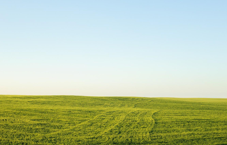 картинки пустых земель бульон конины