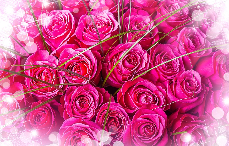 Фото обои цветы, букет, розовый фон, розовые розы