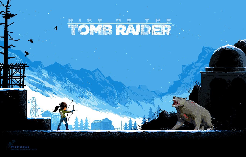 Обои lara croft, tomb raider, Медведь. Игры foto 12