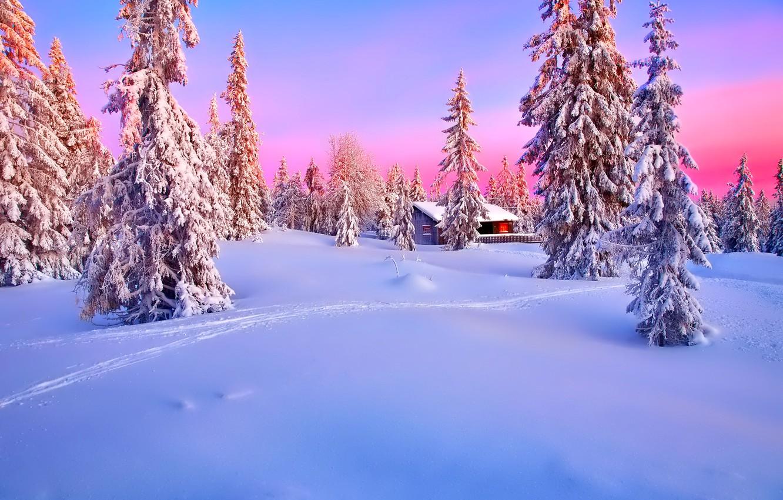 Фото обои зима, лес, небо, снег, закат, дом, ель, зарево