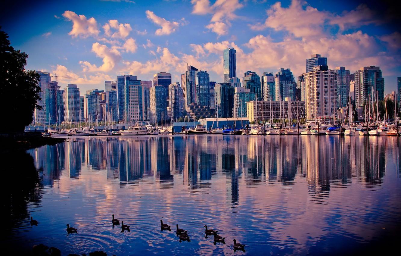 Обои Вода, Канада, утки, небоскребы. Города foto 18