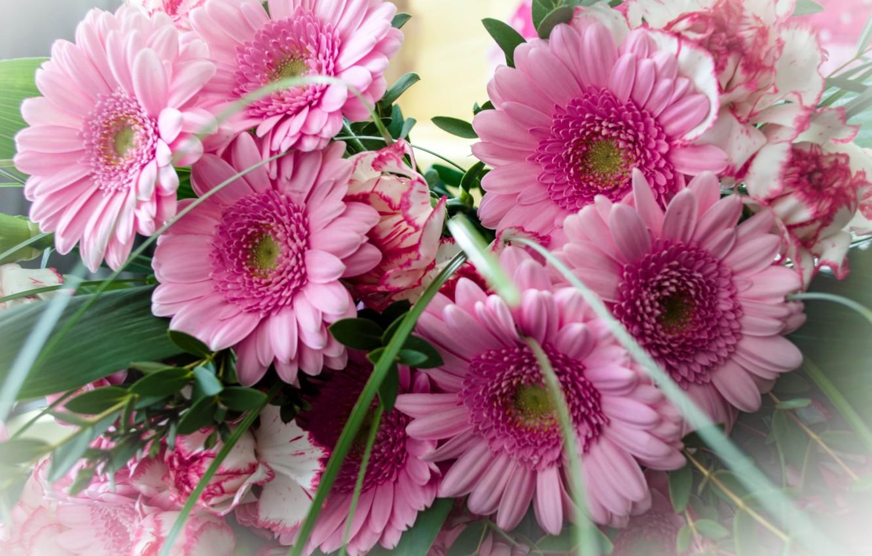 днем рождения фото цветы герберы с днем рождения сама