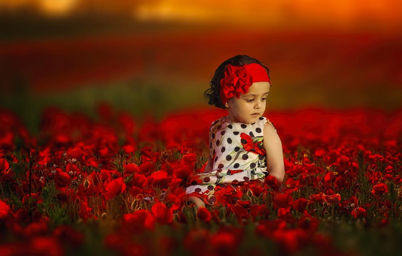 Фото обои цветы, настроение, маки, девочка, повязка, боке
