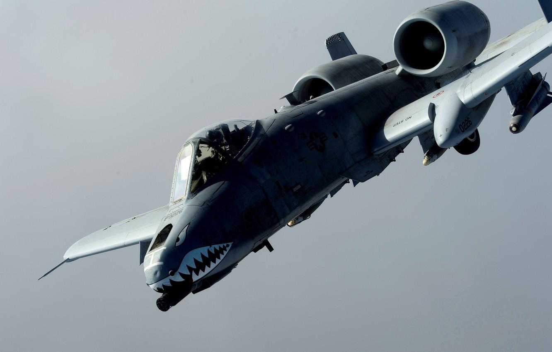 Обои republic, американский, A-10, бронированный, Fairchild, thunderbolt ii. Авиация foto 7