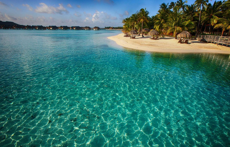 цветами голубая лагуна фото острова всеми