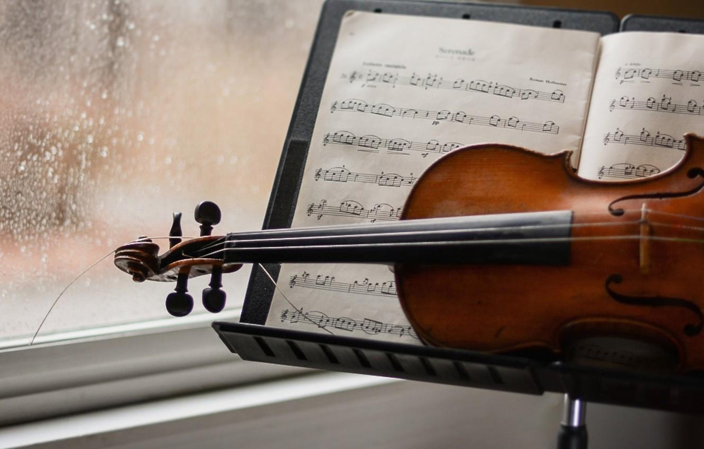 фото скрипки с нотами открываем документ