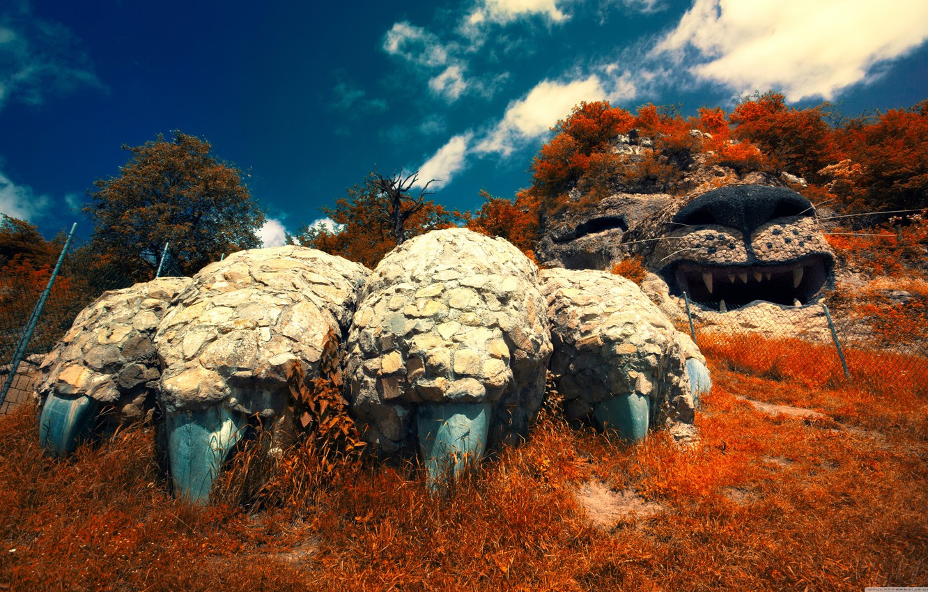 обои Forest Beautiful Landscapes Hills Awesome Garden