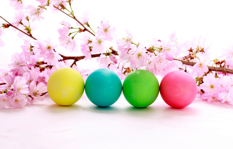 Фото обои цветы, праздник, пасха, цветение, яички, вишневая веточка