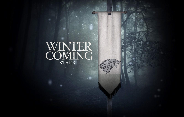 Фото обои зима, лес, ночь, фентези, фантастика, кино, фильм, обои, волк, флаг, фэнтези, книга, сериал, герб, winter, …
