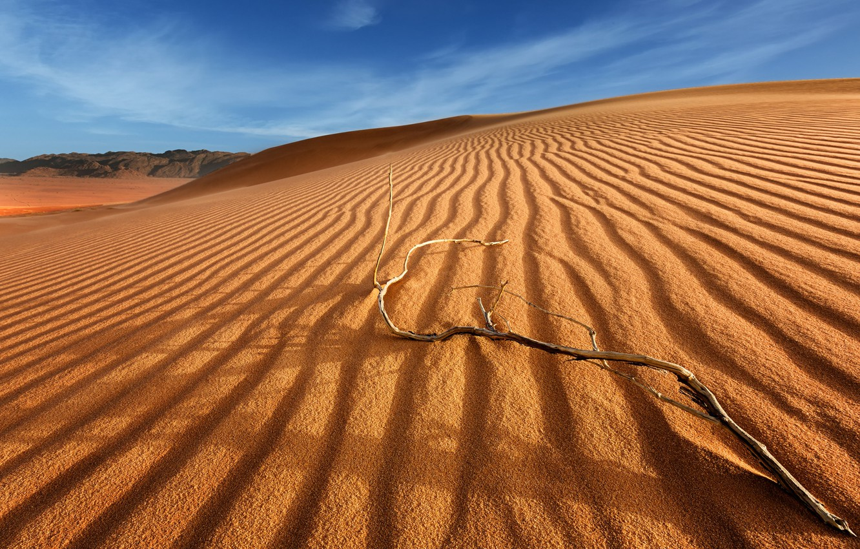 песчаные пустыни картинки настоящее