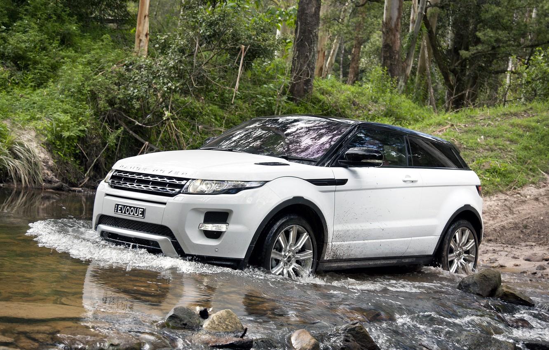 Фото обои лес, белый, деревья, камни, купе, джип, динамик, Land Rover, range rover, coupe, передок, кроссовер, эвок, …