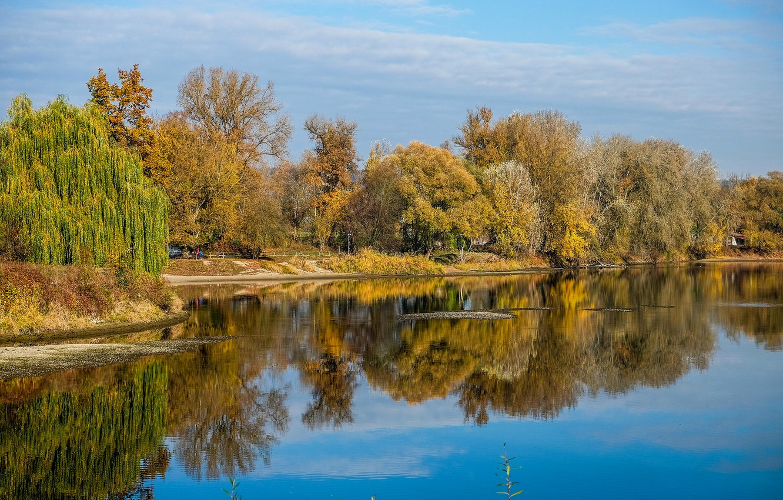 Фото обои осень, деревья, озеро, пруд, парк