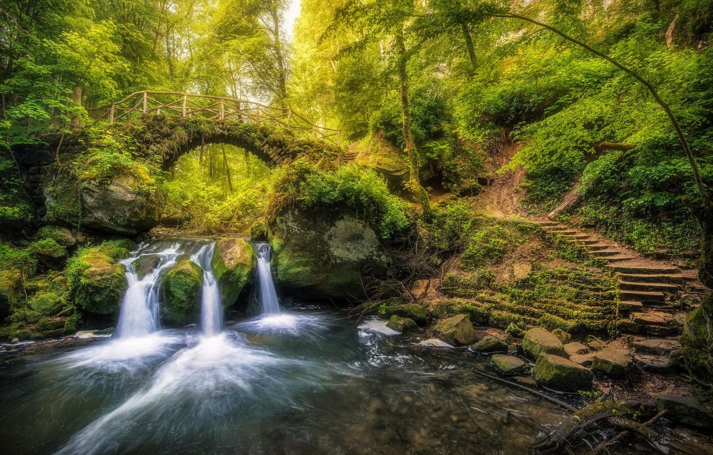 Фото обои лес, мост, река, водопад, лестница, Люксембург, Luxembourg, река Чёрный Эрнц, Black Ernz river, Мюллерталь, Mullerthal, …
