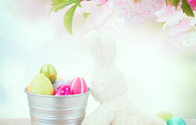 Фото обои цветы, праздник, игрушки, доски, заяц, яйца, ветка, Пасха, ведро, декор, Easter, крашенки