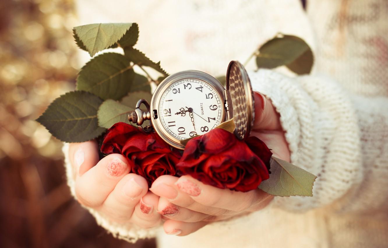 Фото обои листья, время, часы, розы, руки, циферблат, свитер, веты