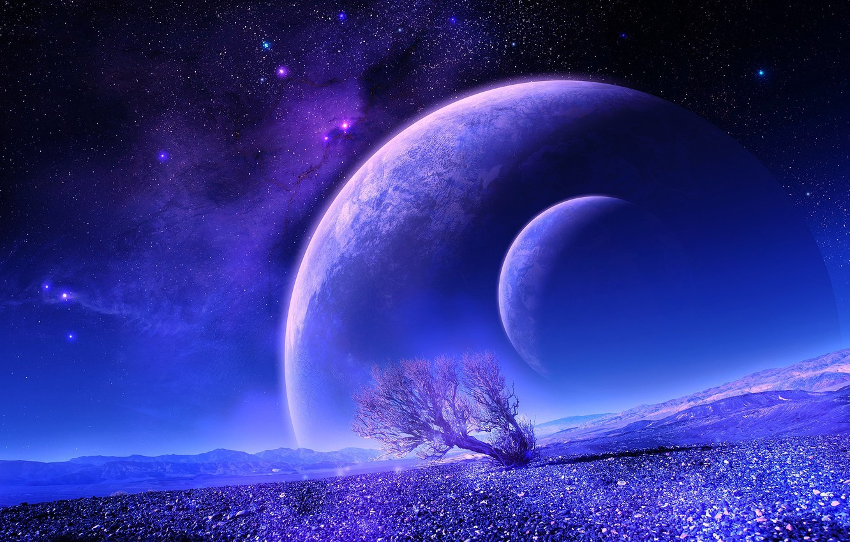 Фото обои звезды, дерево, планета, спутник, звездное небо, ланшафт