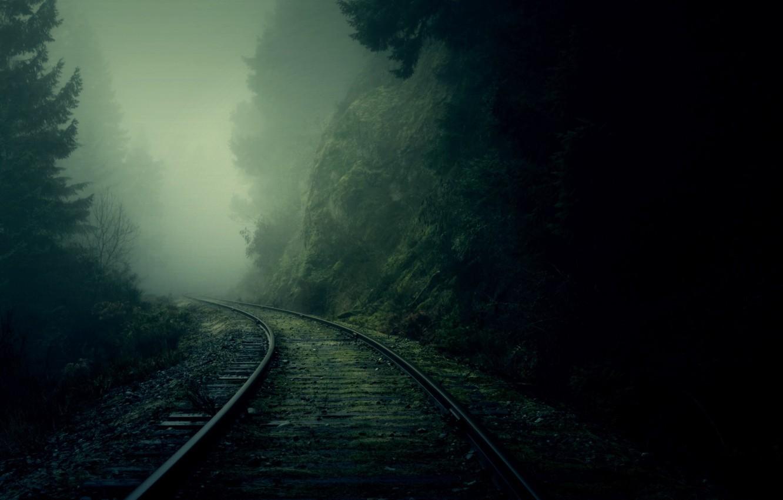 Фото обои лес, туман, рельсы, поворот