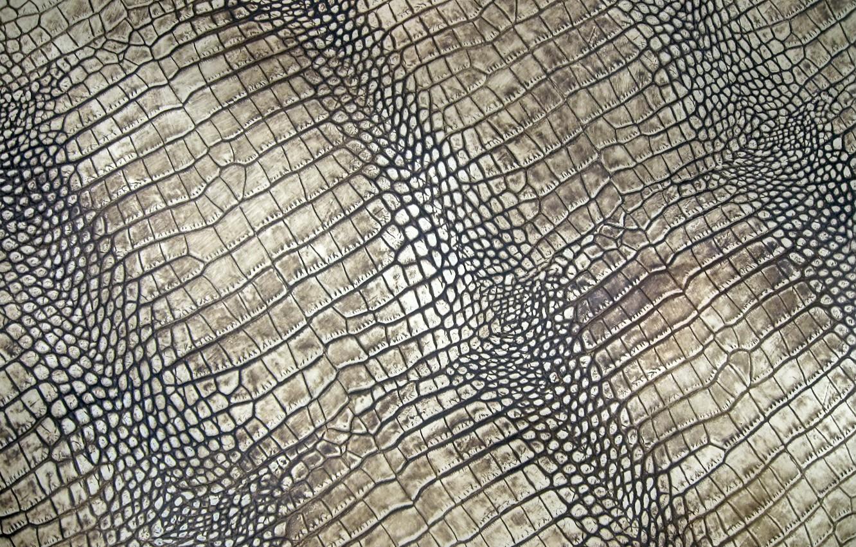 Обои Crocodile, Leather, Крокодил, фон, texture, кожа, Red, красньій. Текстуры foto 16