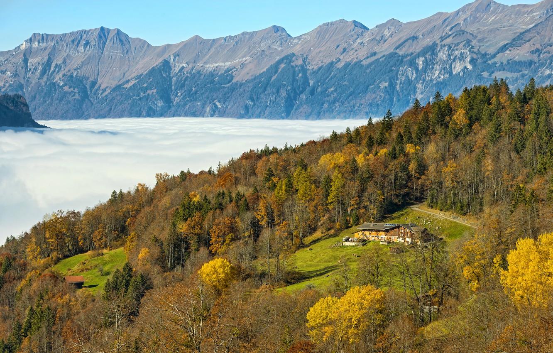 Обои Облака, hasliberg, швейцария, осень. Пейзажи foto 6