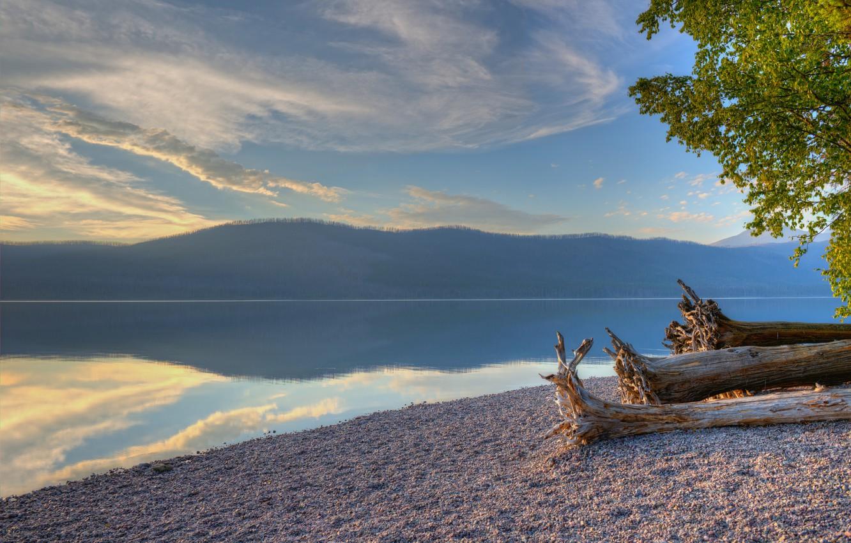 Фото обои лес, деревья, озеро, берег, гора, Glacier National Park, Montana, Lake McDonald