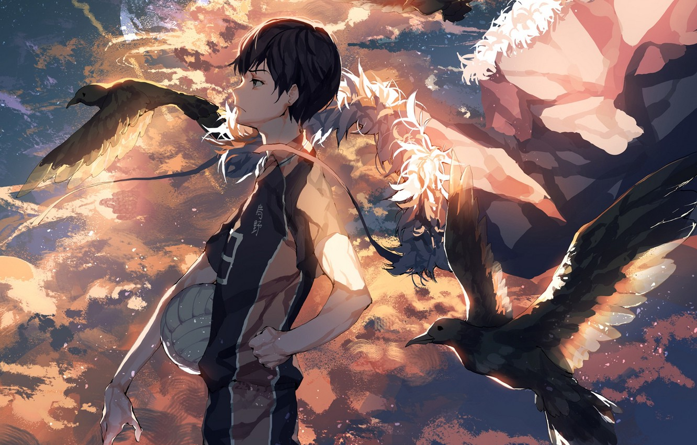 Фото обои небо, закат, птицы, мяч, аниме, арт, парень, волейбол, ser323, Haikyuu!!, tobio kageyama
