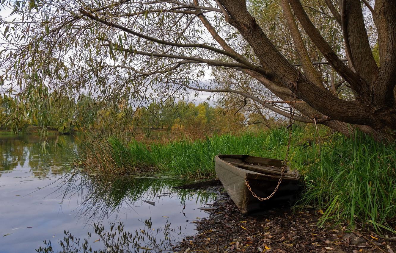 Фото обои природа, озеро, лодка