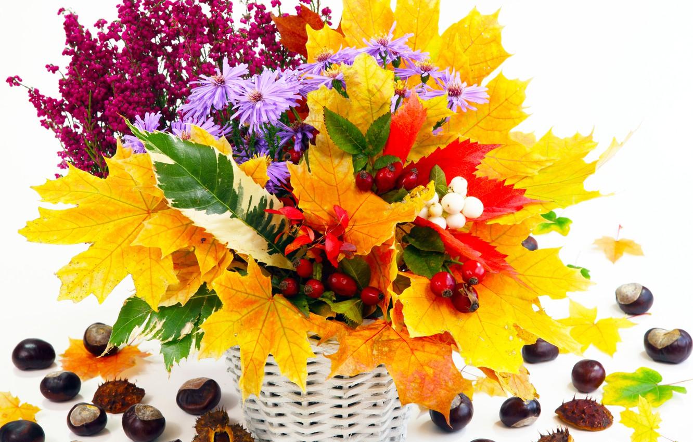 Фото обои осень, листья, цветы, натюрморт, каштаны