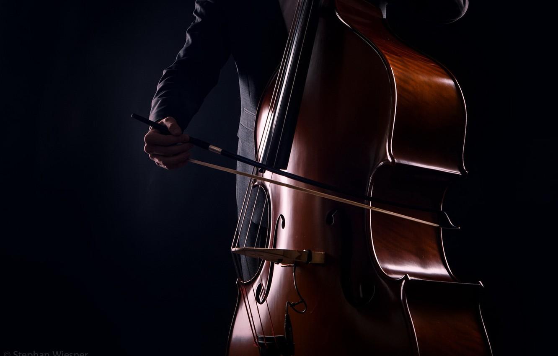 картинка скрипка на черном фоне вот