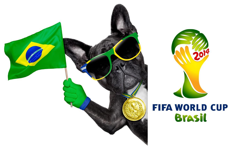 Фото обои logo, dog, football, flag, funny, cool, World Cup, Brasil, FIFA, 2014