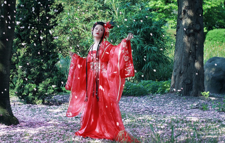 Фото обои восток, кимоно, Cherry Blossom