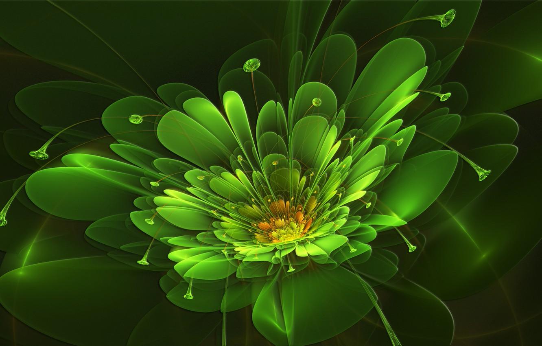 Фото обои цветок, лучи, абстракция