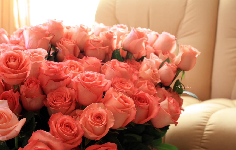 вручения подарков розы букеты картинки фото высокого качества хотите