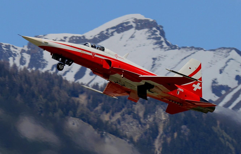 Обои истребители, «тайгер» ii, многоцелевые, F-5e, tiger ii. Авиация foto 11