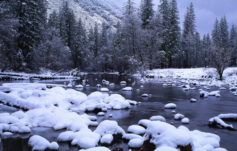 Фото обои лес, снег, ручей