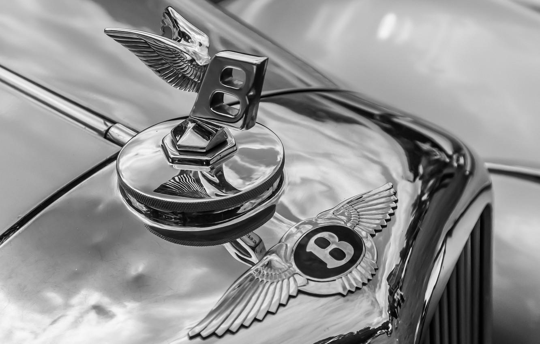Фото обои макро, ретро, Bentley, решетка, эмблема