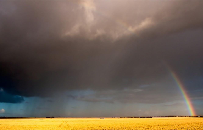 Фото обои поле, небо, облака, радуга