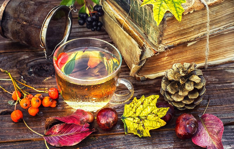 Фото обои листья, ягоды, чай, доски, книги, чашка, шишка, рябина, каштаны, ситечко